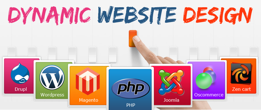 Dynamic Website Design @ Rs 3800 - Dynamic Website Design